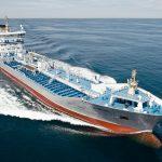 De første 190 søfarende gennem Kastrup Lufthavn efter nyt tiltag